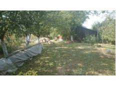 Bjelovar - Okolica, Trojstveni Markovac